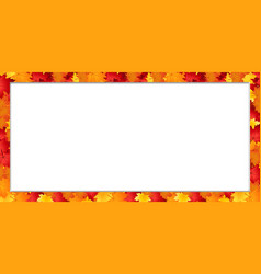 rectangle border frame with fallen autumn maple vector image