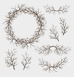 Set branches vector