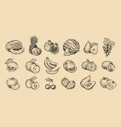Set fruits fresh food healthy eating concept vector