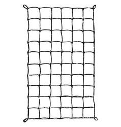 Silkworm square net vintage vector