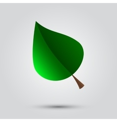 Eco icon with green leaf vector image vector image