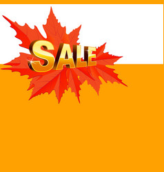 banner for autumn sale in frame vector image