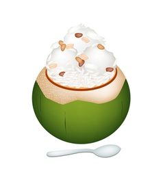 Coconut Ice Cream with Nuts and Sticky Rice vector image