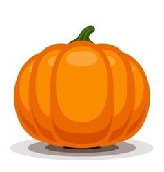 Orange pumpkin vector image