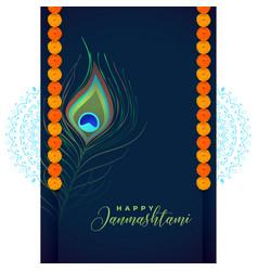 Peacock feather for shree krishna janmashtami vector