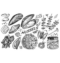 sea mussels in vintage retro style nautical vector image