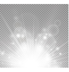 white sparks and stars glitter special light vector image vector image
