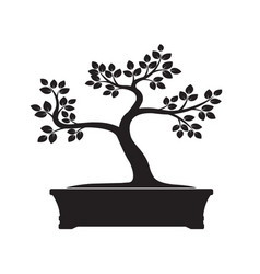 black bonsai tree vector image