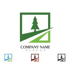 cedar tree logo template icon design vector image