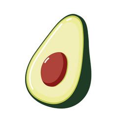 Half avocado fresh vector