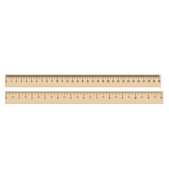Realistic wood rulers 30 centimeters and 12 vector