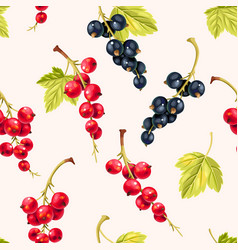 Seamless pattern black and red currant berries vector