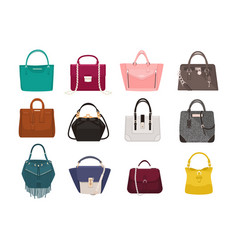 Set of stylish women s handbags - tote shopper vector