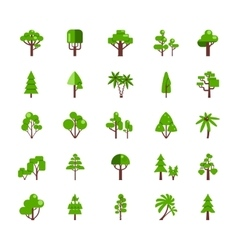 Tree Set Collection vector
