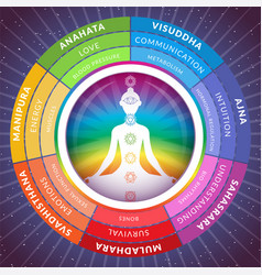 Yoga chakras infographics with meditating girl vector