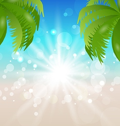 Summer holiday background sunlight and palmtree vector image vector image