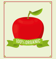 apple food 100 organic nutrition vector image