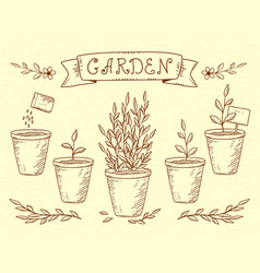 set of plant in pots vector image vector image
