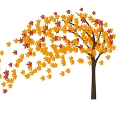 Autumn maple tree in the wind vector