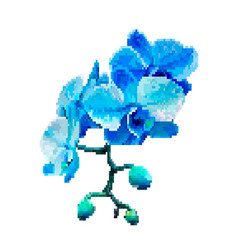 blue meadow flowers pixel art vector image
