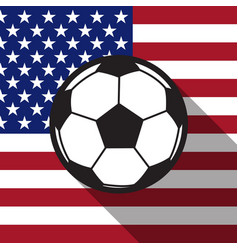 football icon with United States flag vector image