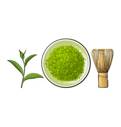 Hand drawn bowl of matcha powder bamboo whisk and vector