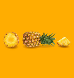 Pineapple on a bright yellow background vector