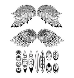 set of wings and feathers vector image