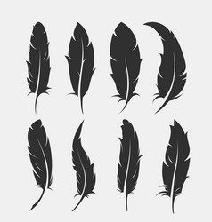 set old feather for writing vector image