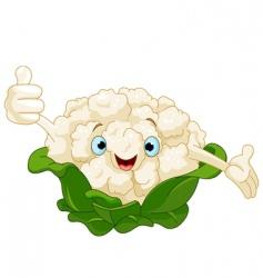 cauliflower character vector image vector image