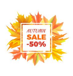 autumn sale -50 off icon vector image