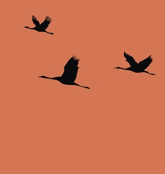 Cranes vector