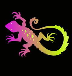 lizard tattoo vector image