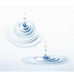 Realistic transparent drop and circle ripples set vector