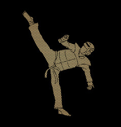 Taekwondo high kick action with guard equipment vector