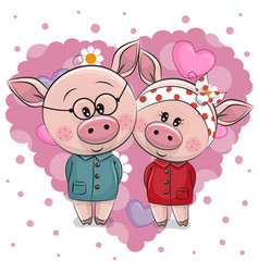 Two cute pigs on a background of heart vector