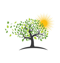 tree leaf logos nature element icon vector image