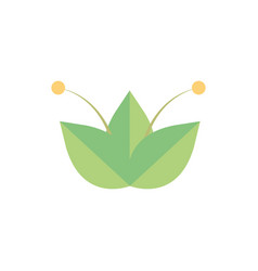 flower growth natural floral botanical icon vector image