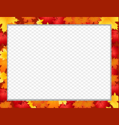 photo frame with fallen autumn maple leaves vector image