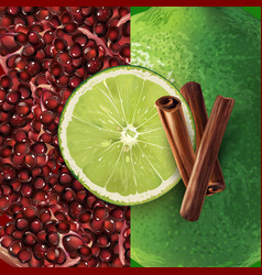 Pomegranate cinnamon and lime vector
