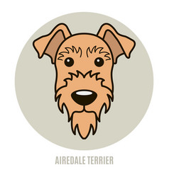portrait of airedale terrier vector image