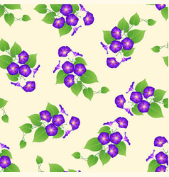 Purple morning glory on beige ivory background vector