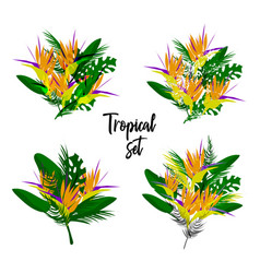 Tropical floral set vector