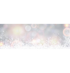 Winter banner with snowflakes vector image