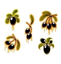 Black olives symbols set vector image vector image