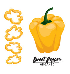 cartoon sweet pepper ripe yellow vegetable vector image vector image
