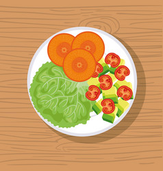 dish with fresh salad healthy food vector image vector image