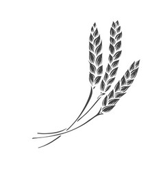 Rye or wheat spikelets glyph icon vector