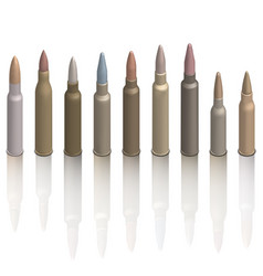 Set of photorealistic cartridges with a bullet vector