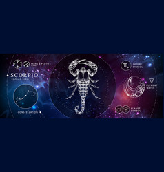 Witchcraft card with astrology scorpio zodiac sign vector